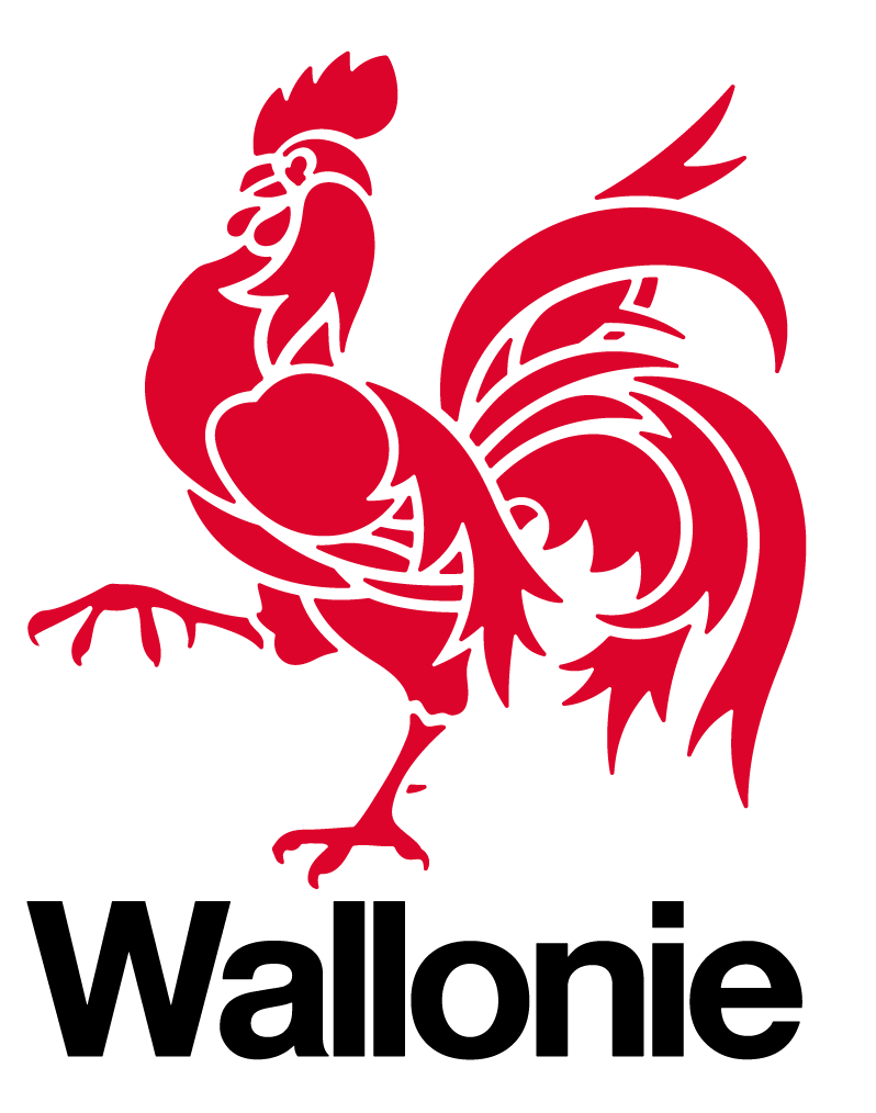 region wallonne logo